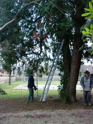 Dscn0001jpg_les_jardins_dalexandre